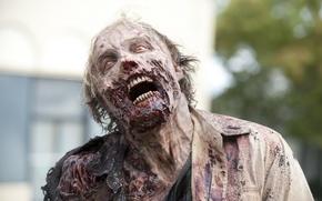 the walking dead, zombie, blood обои