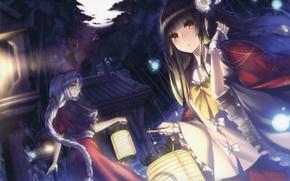 Картинка лес, взгляд, ночь, улыбка, девушки, фонарь, touhou, art, inaba tewi, reisen udongein inaba, yagokoro eirin, …