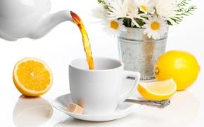 Картинка цветы, лимон, чай, ромашки, чашка, сахар, напиток, ложечка, блюдце, заварник, ведёрко