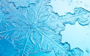Обои лед, зима, узор, снежинка