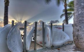Картинка пляж, лето, пальмы, спорт, доски для серфинга