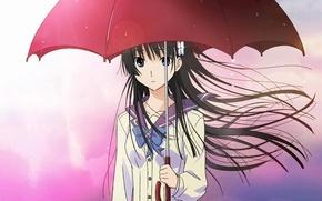 Обои девушка, капли, зонт, аниме, арт, цветочек, sanka rea, sankarea, Санка Рэя