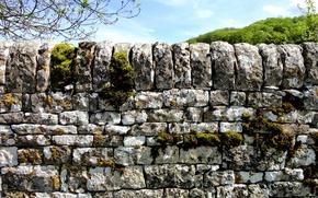 Картинка природа, камни, мох, Каменный забор
