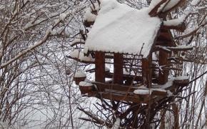 Картинка зима, снег, фон, widescreen, обои, wallpaper, кусты, широкоформатные, background, красивые обои, обои на рабочий стол, …