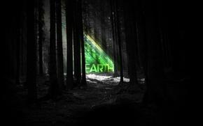 Картинка лес, полоски, ночь, земля, earth