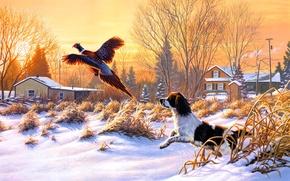 Картинка Frank Mittelstadt, Getting Up, охотничья, собака, снег, летать, природа, зима, искусство, живопись, птица, восход