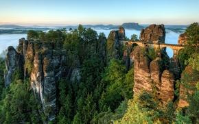 Картинка деревья, горы, мост, туман, рассвет, ели, горизонт, сосны, германия, Germany