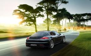 Картинка деревья, Porsche, Panamera, порше, панамера, 2015