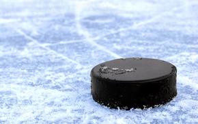 Картинка лед, коньков, врезания, льду, полосы, макро., лезвия, хоккей, шайба, черная