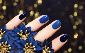 Обои макро, синие, пальцы, маникюр, цветочки, фон, ногти