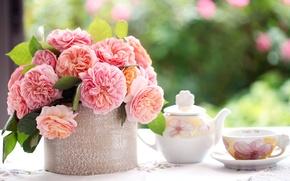 Картинка листья, цветы, стол, розы, букет, лепестки, размытость, чайник, чашка, розовые, блюдце, скатерть