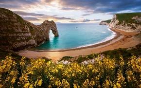 Картинка цветы, море, скала, природа, арка, пляж