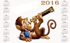 Картинка обезьяна, monkey, календарь, calendar, 2016