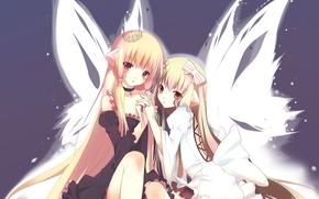 Картинка девочки, крылья, корона, Две, бант, длинные волосы