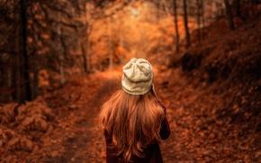 Обои осень, листья, девушка, Dream Chaser