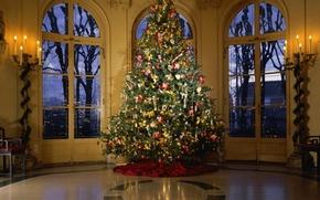 Картинка украшения, дом, праздник, ёлка, герлянды
