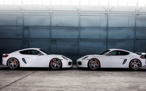 Обои белый, Porsche, Cayman, порше, TechArt, кайман