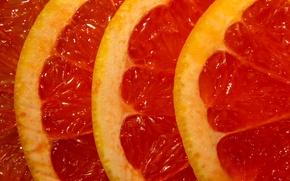 Картинка макро, фрукт, Slices of grapefruit