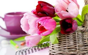 Картинка фото, Цветы, Тюльпаны, Корзинка, Крупным планом