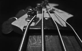 Картинка макро, гитара, струны, guitar, колки, гриф, бас, Bass