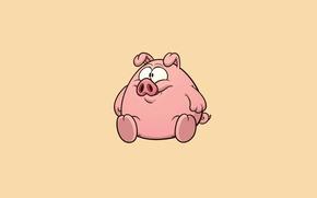 Обои минимализм, свинья, pig, свинка, светлый фон