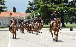 Картинка Argentina, Soldiers, Horse, Trumpet, Cavalry, Historic, Military Parade