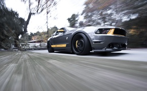Картинка скорость, Mustang, Ford, мустанг, серебристый, мускул кар, форд, передняя часть, silvery