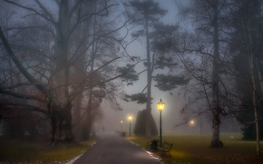 Картинка benches, park, path, people, foggy, fog, trees, lamp posts