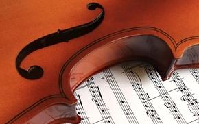 Картинка макро, ноты, Violin