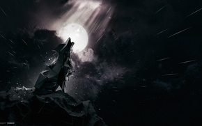 Картинка небо, скала, луна, волк, вой, desktopography, звездопад, фенрир