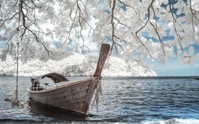 Обои уединение, лодка, магнолия, романтика, цветы