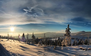 Картинка зима, лес, солнце, снег, закат, горы, мороз