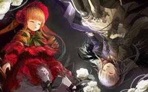 Картинка свет, сон, белые розы, Suigintou, Rozen Maiden, Shinku
