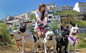 Картинка прогулка, девушка, собаки