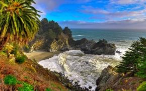 Картинка море, небо, пальма, скалы, водопад, США, californa
