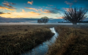Картинка поле, небо, облака, деревья, туман, ручей, зарево