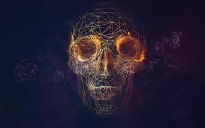 Картинка череп, розы, линий, геометрия