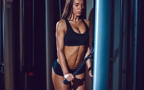 Обои workout, bodybuilder, gym, fitness