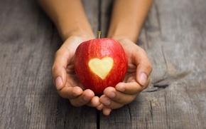Картинка девушка, фон, widescreen, обои, настроения, сердце, человек, apple, яблоко, руки, wallpaper, форма, сердечко, широкоформатные, background, …
