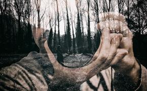 Обои photographer, camera, forest