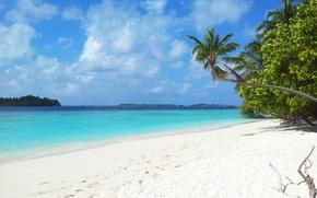 Картинка тропики, красота, отпуск, Мальдивы, oстров
