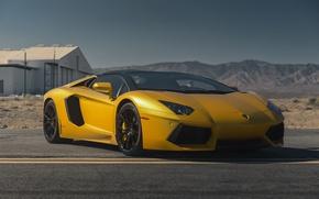 Картинка Lamborghini, Color, Aventador, Gold