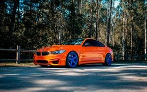 Картинка BMW, Orange, Wheels, Incurve, LP-5