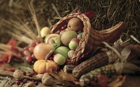 Картинка осень, листья, ягоды, корзина, яблоки, кукуруза, урожай, тыква, орехи, овощи, груши, autumn, leaves, nuts, pears, …