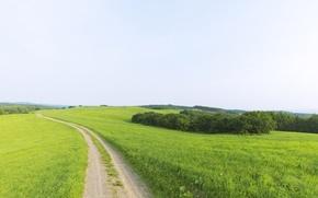 Обои красота, горизонт, зелень, даль, Дорога