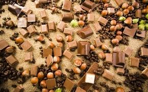 Обои кофейные зерна, лесные орехи, шоколад