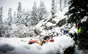 Обои Машина, DS3, Лес, Люди, Total, WRC, Зима, Rally, Спорт, Елки, Citroen, Снег, Ралли