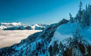 Обои небо, горы, туман, зима, снег, деревья