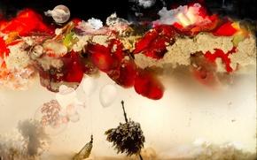 Обои aquarium, water, flowers, red, moon