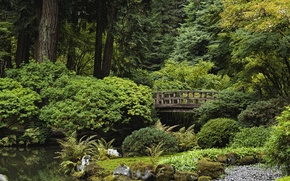 Картинка деревья, пруд, парк, камни, США, кусты, Oregon, Portland, Japanese Garden
